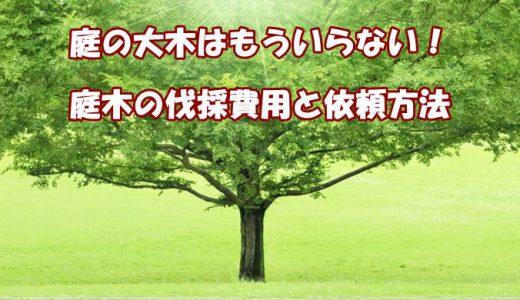 庭木を伐採したい!伐採費用の目安や依頼先を解説!