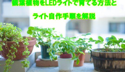 観葉植物をLEDライトで育てる方法とライト自作手順を解説