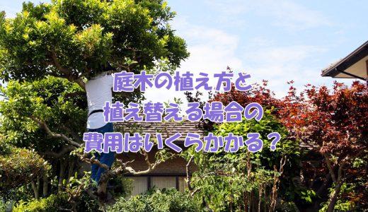庭木の植え方と植え替える場合の費用はいくらかかる?