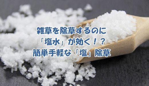 雑草を除草するのに「塩水」が効く!?簡単手軽な「塩」除草紹介