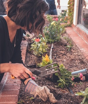 家庭菜園をしている女性