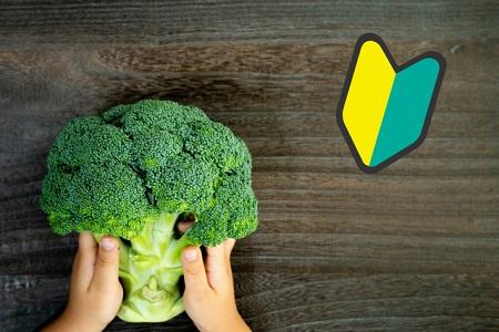 家庭菜園でブロッコリーを育てる方法