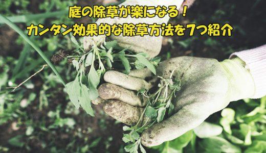 庭の除草が面倒くさい人へ朗報!カンタン効果的!除草方法7つ紹介