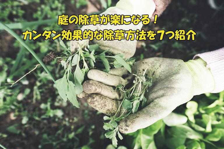 庭の除草がメンドクサイ人へ朗報!カンタン効果的!除草方法7つ紹介
