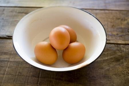 自然のめぐみ!鶏卵も頂けちゃう!