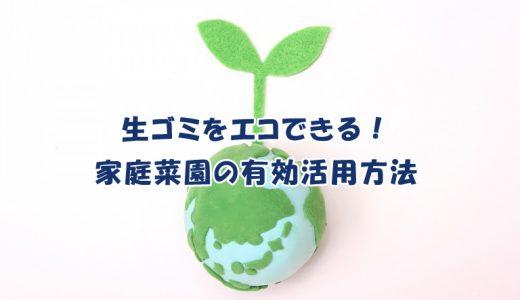 生ゴミをエコできる!家庭菜園の有効活用方法