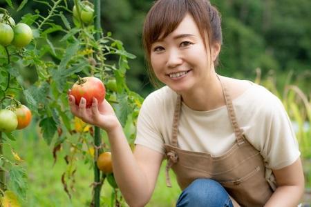 家庭菜園で実現!無農薬野菜を育てるポイント