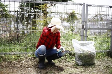 草刈りは大変。もっと楽にできる方法を考えてみる