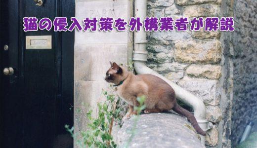 猫の侵入は大粒砂利で対策できるのかを外構業者が解説